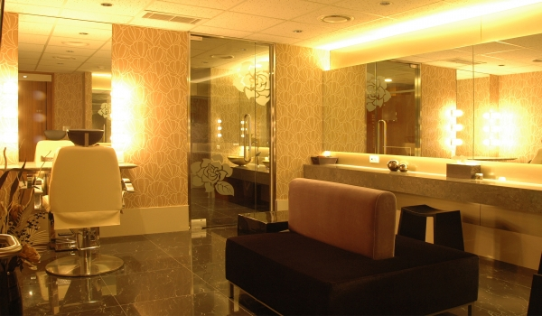 Esthetic Room & Powder Room<br> 	.